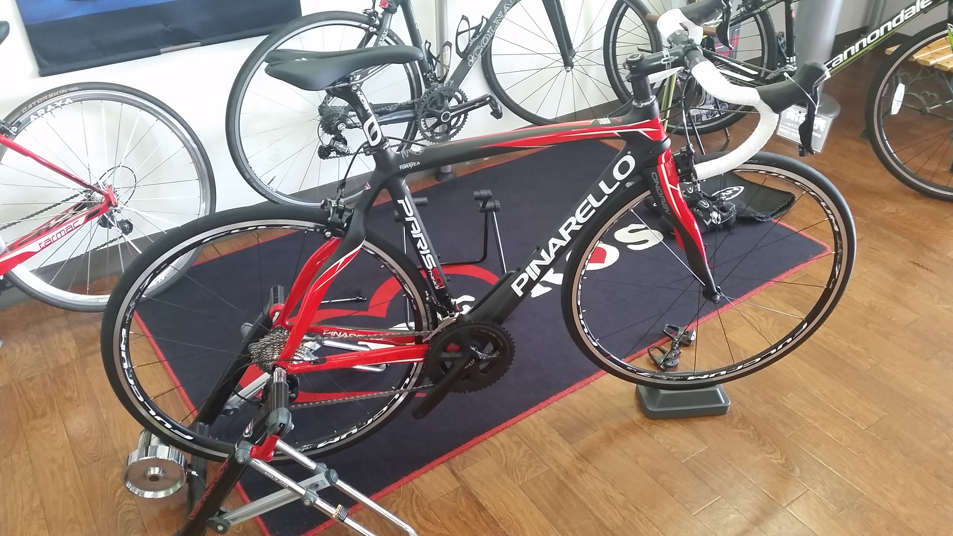 PINARELLO PARIS鳴子君